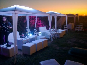 GAZEBOS Y LIVING